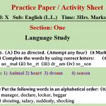 Practice Paper No.7
