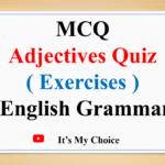 MCQ Adjectives Quiz